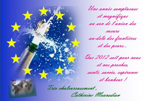 Bonne année 2012, Europe